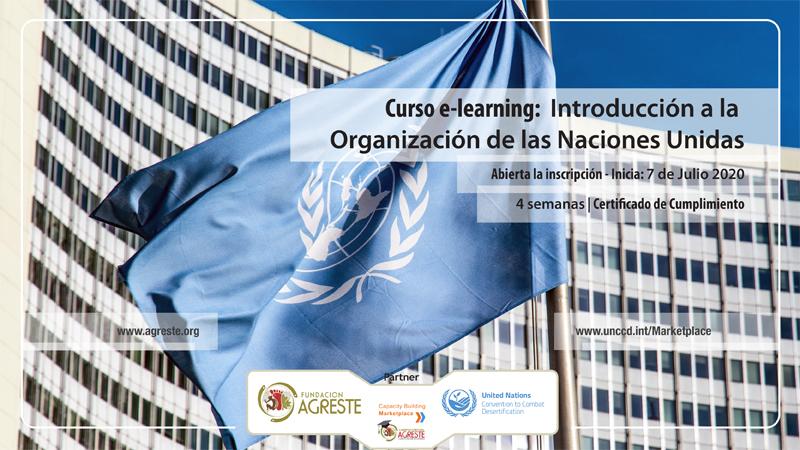 Curso sobre las Naciones Unidas